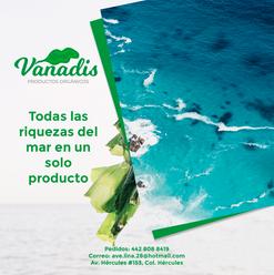 022-FB-Vanadis.png