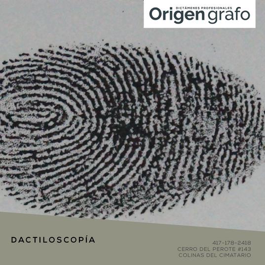Origen_grafo_Mesa de trabajo 1 copia 9.p