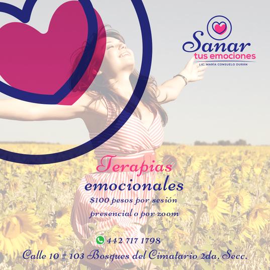 014-FB-Sanar-Tus-Emociones).png