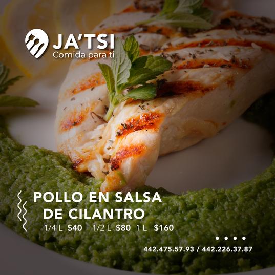 pollo_en_slasa_de_cilantro.png