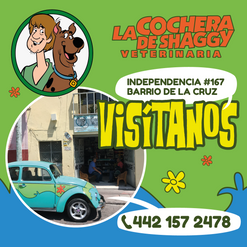 Post_la_cochera_de_Shaggy_Mesa de trabaj