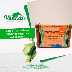 016-FB-Vanadis.png