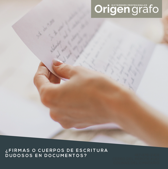 Origen_grafo_Mesa de trabajo 1 copia 18.