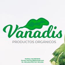 029-PERFIL-FB-Vanadis.png