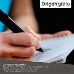 Origen_grafo_Mesa de trabajo 1 copia 24.