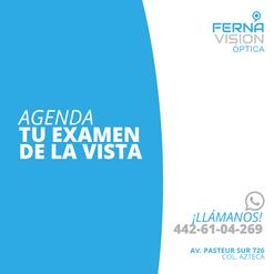 Ferna_Vision_Mesa de trabajo 1 copia 23.