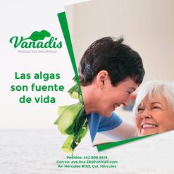 021-FB-Vanadis.png