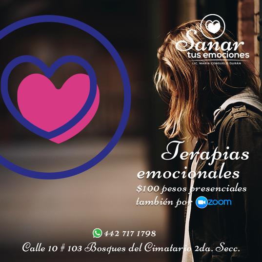 05-FB-Sanar-Tus-Emociones).png