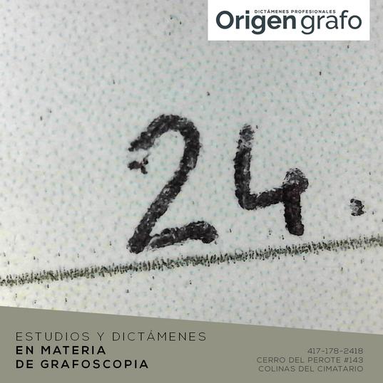 Origen_grafo_Mesa de trabajo 1 copia.png