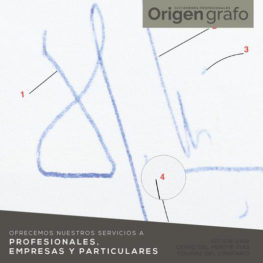 Origen_grafo_Mesa de trabajo 1 copia 13.