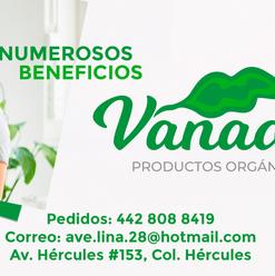 030-COVER-FB-Vanadis.png