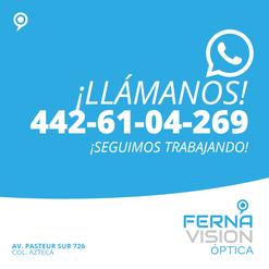 Ferna_Vision_Mesa de trabajo 1 copia 6.p