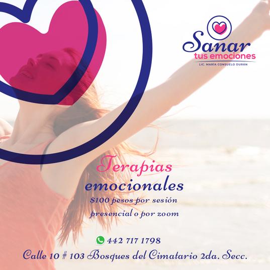 013-FB-Sanar-Tus-Emociones).png