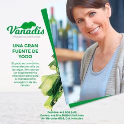 02-FB-Vanadis.png