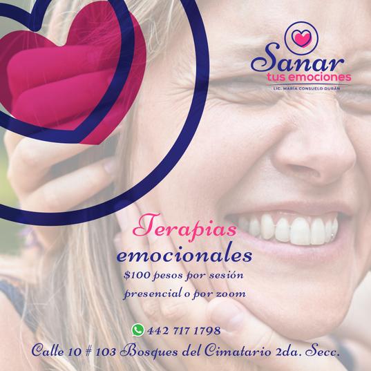 012-FB-Sanar-Tus-Emociones).png