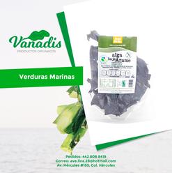 017-FB-Vanadis.png