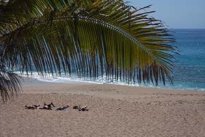Plage de sable fin Boucan Canot La Réunion