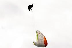 parapente  (12)