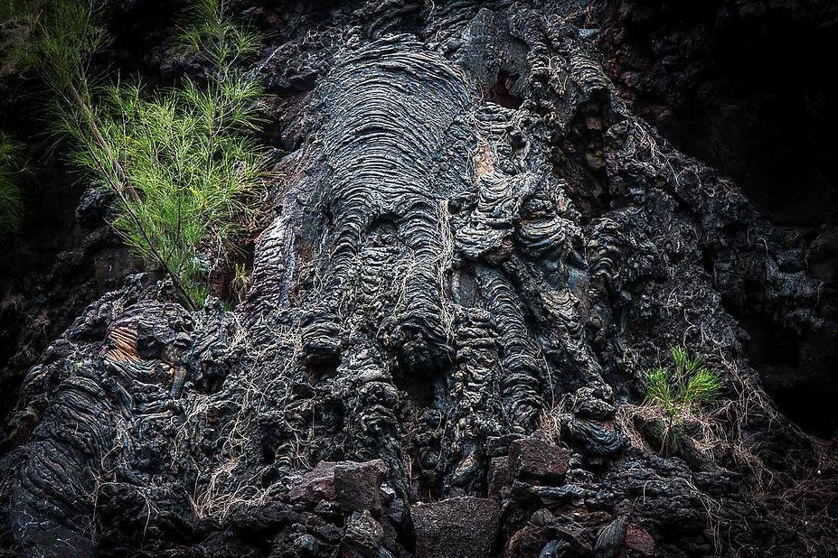 Coumée de lave de la Pointe de La Table, tête d'éléphant
