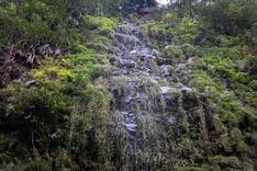 Cascade Bras de La Plaine
