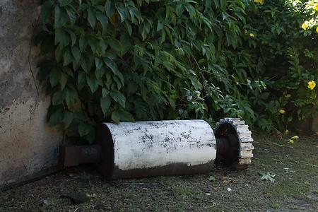 Cylindre servant à broyer les feuilles d'aloès