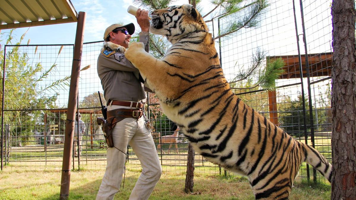 best-netflix-shows-tiger-king-1200x9999.