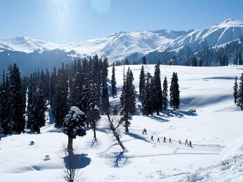 79-797235_gulmarg-kashmir-snow-meadow-of