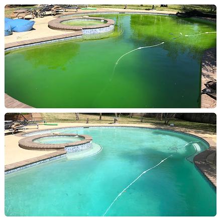algae-treatment-grapevine-pool-dfw.PNG
