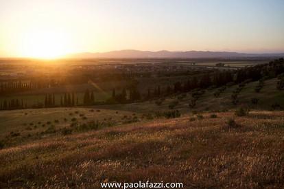 www.paolafazzi.jpgwww.paolafazzi.jpg