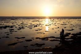 www.paolafazzi.jpg