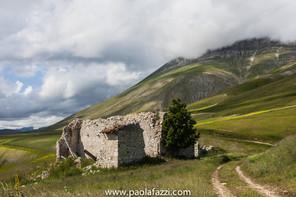 sibillini_giu-4718.jpg