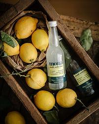 une bouteille de craft soda au citron posée dans un bac avec plusieurs citrons entiers