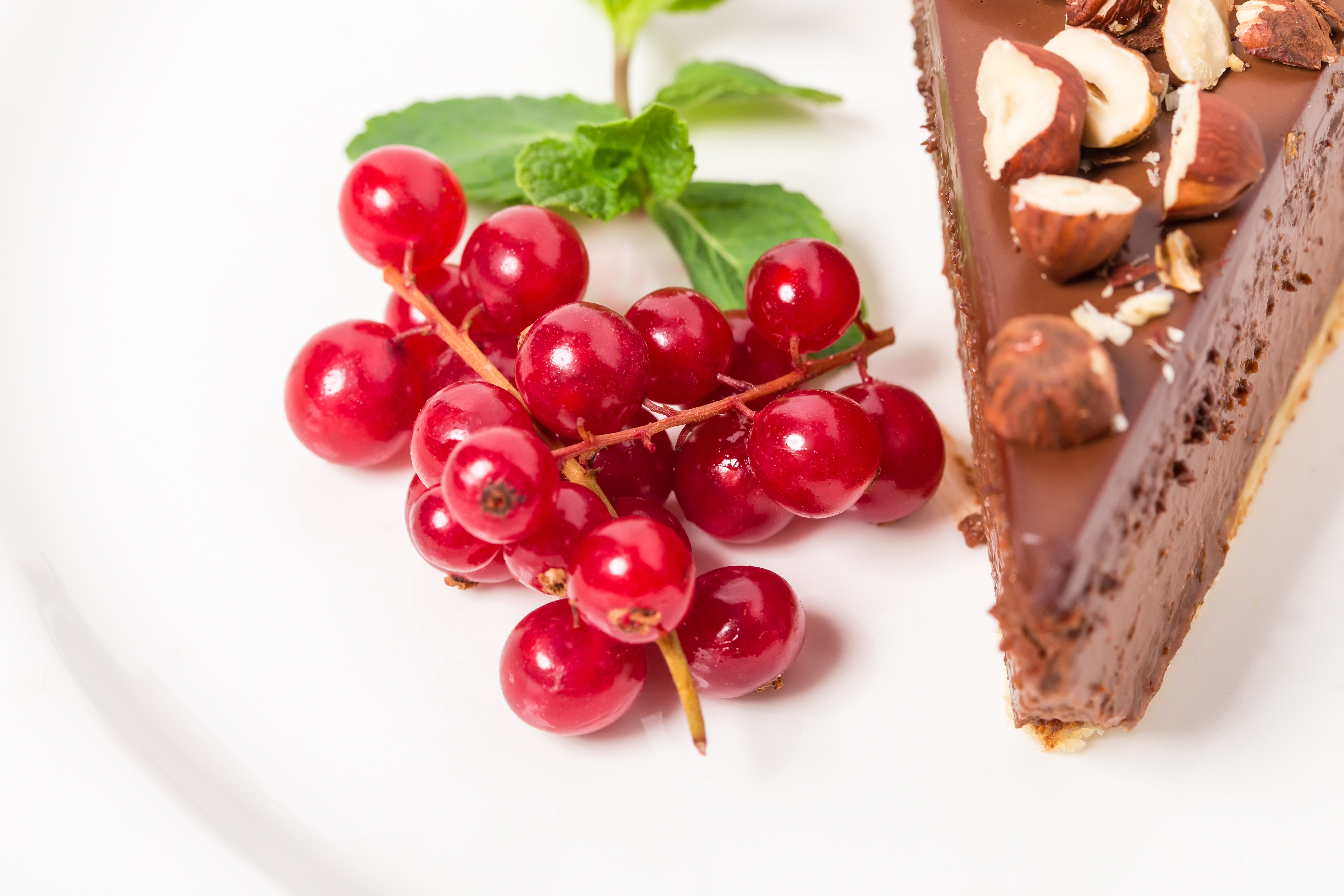 chocolate-cheesecake-with-hazelnuts-PNZA