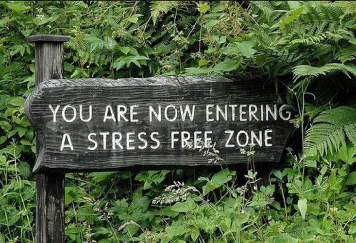 address your stress