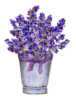 lavender%20in%20a%20basket_edited.png