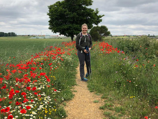 Day 19 on the Camino