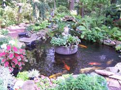 Landscaped Coy Pond