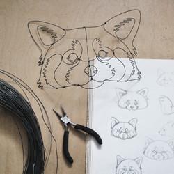 Panda roux et dessins préparatoire