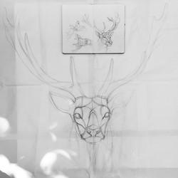 Conception d'un cerf