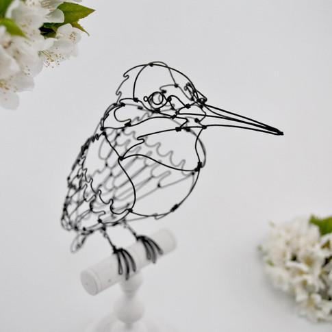 martin pecheur cerisier2.jpg