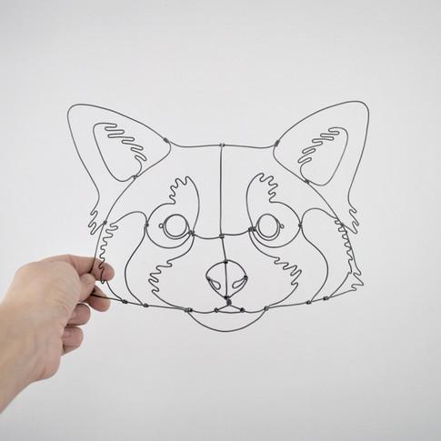 panda-roux-echelle-face.jpg