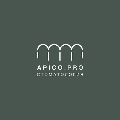 APICO_LOGO-02JPG.jpg