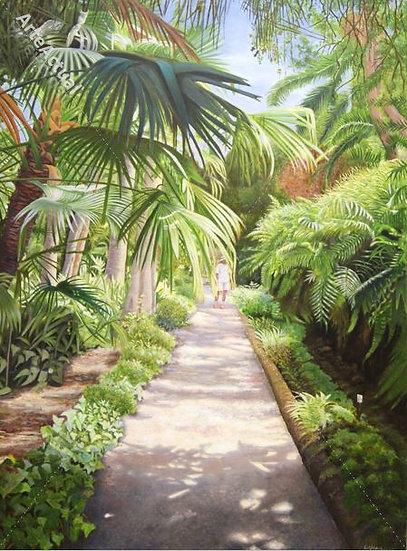 Jardín Botánico de Tenerife I