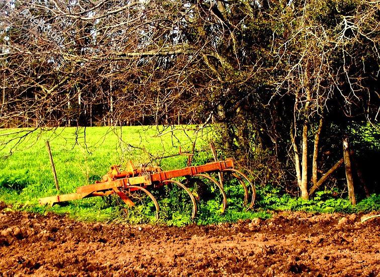 El descanso del arado