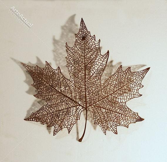 "Krum  Stanoev - ""Canadá"""