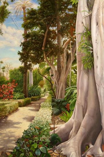 Jardín Botánico de Tenerife II