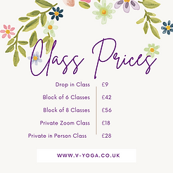 Class Prices 2021.PNG