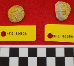 Seatrepid finds more gold