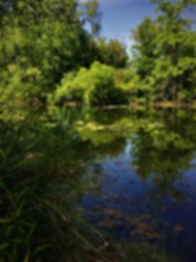 pond portland.jpg