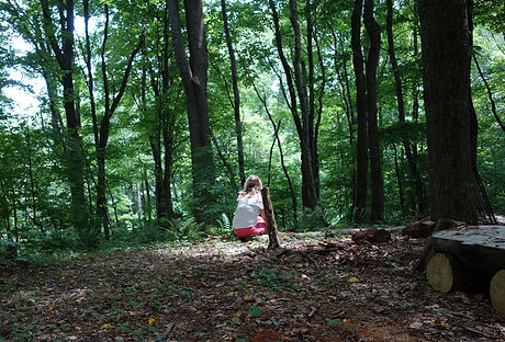 Minnie in forest n carolina.JPG